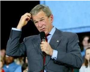 bush-idiot.jpg