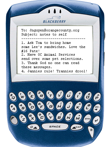Joe Shaw has a funny post up at his new blog, O.C. Progressive.  He got a hold of a screenshot of O.C. Supervisor Janet Nguyen's Blackberry – the very shot […]
