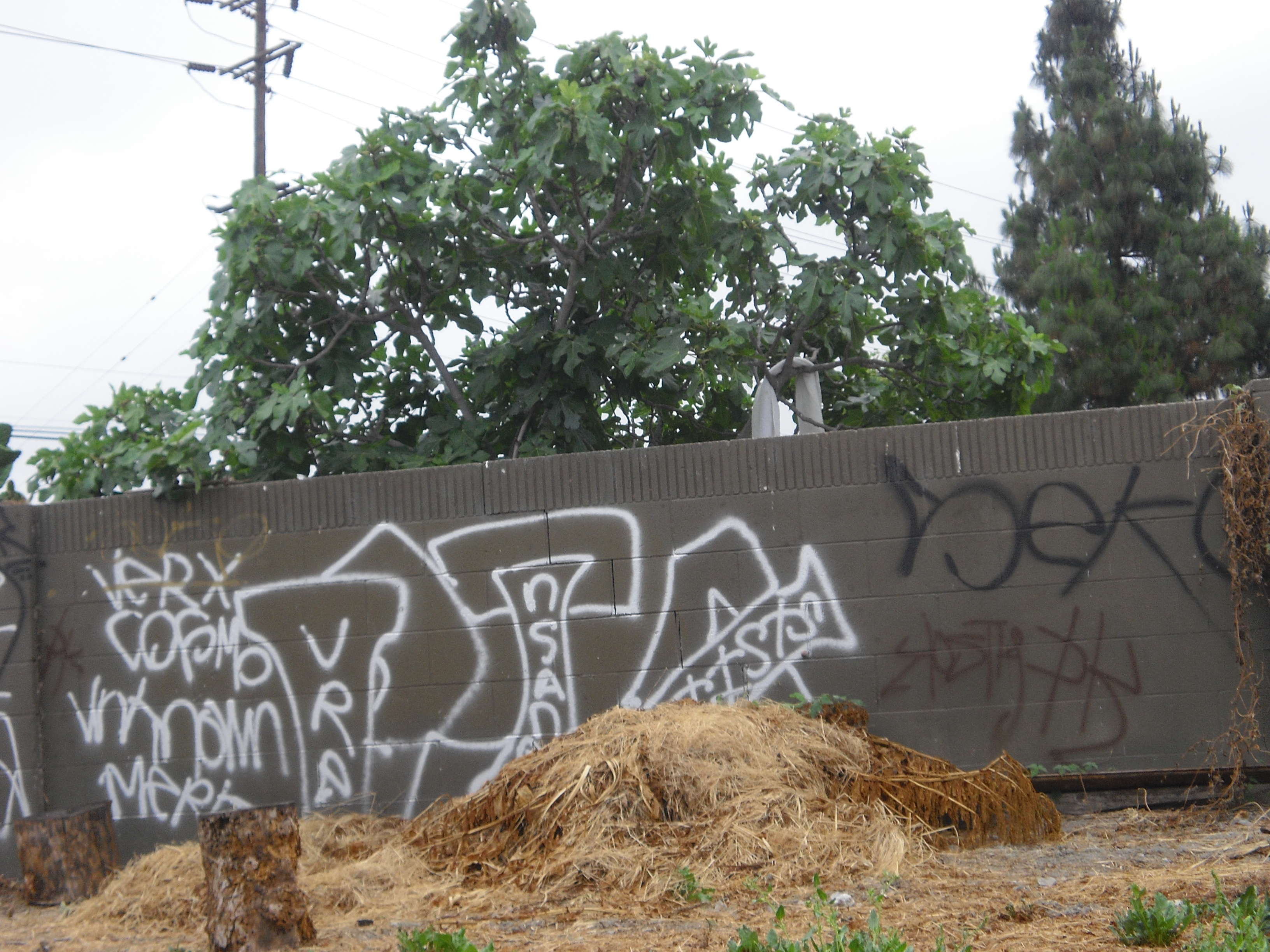 """Graffiti in Santa Ana's """"South Coast"""" Neighborhood You would think that the activist types in Santa Ana would be up in arms over the impending water rate increase that will […]"""