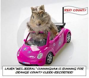 Laura Cunningham for Orange County Clerk Recorder
