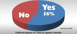 Tax and regulate marijuana