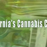 California's Cannabis Culture from amanda van west on Vimeo. I received an email this week from Amanda Van West, who is finishing her MA degree in International Broadcast Journalism at […]