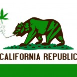 . . . Yes, the pun was intended. Even though Prop 19 lost at the polls this past November 54%-46%,  cannabis/marijuana legalization activists have mobilized themselves to bring another […]