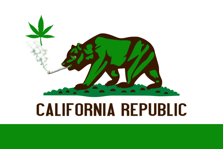 While some local and statewide groups and activists want to talk about putting an initiative on the ballot by holding a town hall, a group of marijuana legalization activists […]