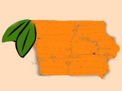 Iowa as an Orange