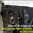 . . . California has a massive budget crisis and since our state is in a state of gridlock where Democrats refuse to concede cuts to their pet causes and […]