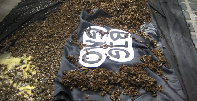 Bees dumped at Monsanto protest