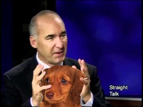 Gary DeLong depicted holding scared puppy's head