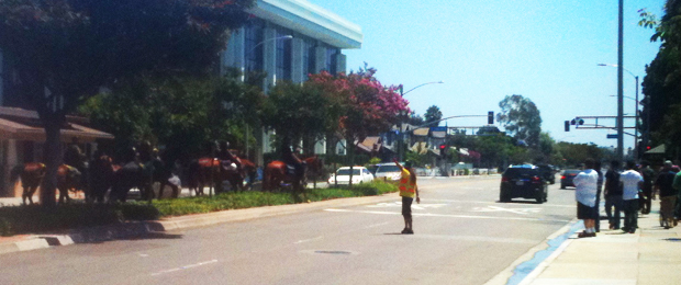 Horses cross Harbor Blvd. to follow protest