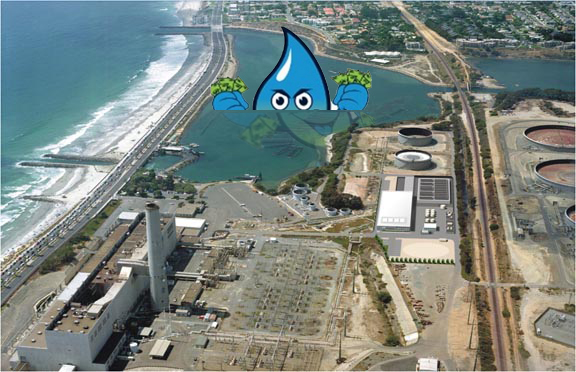 Carlsbad Desal Plant with Soaky in the pool