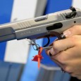 A bill that would have required background checks for firearm sales at gun shows and on the Internet was voted down today in the Senate54-46. News talk radio is a […]