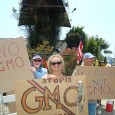 Occupy Long Beach and concerned citizens against Monsanto got the word out about genetically modified foods Saturday along PCH in Long Beach. Their goal was to keep the problems of […]