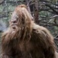 """. Since our dear Moorlach, following his own sasquatch code, doesn't mind reprinting others' lengthy articles in their entirety, I will share with you what just came """"across my transom"""" […]"""