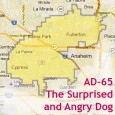 """In the 2014 election for AD-65, Scott Lay's """"Around the Capital"""" website says the following about prospective candidates: Probable Candidates Sharon Quirk-Silva (Democrat) – Member, State Assemblywww.sharonquirksilva.com Young Kim (Republican) […]"""