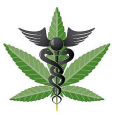 As measures to reform marijuana policy make great strides across the rest of the nation, California continues to lag behind in establishing a statewide system of regulation that protects safe […]