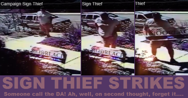 Burly sign thief in Station Wagner wanted