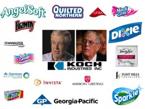 boycott koch