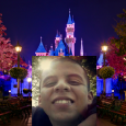 """. . I hear Disneyland told Gabriel San Romanthey had """"technical problems"""" last Friday night preventing them from setting off their usual nightly fireworks, the ones that drive dogs […]"""